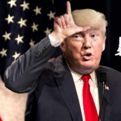 #trump#team#losers#