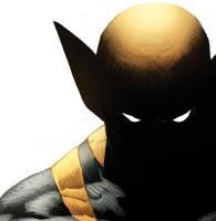 Wolverine's Photo